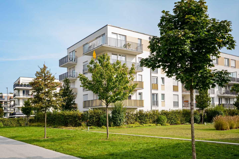Wohnung mieten in Dresden